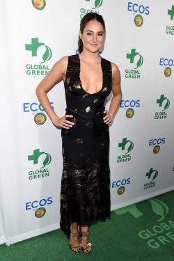 Shailene Woodley impresses in a low cut dress at the Global Green Awards in LA – My Face H ...